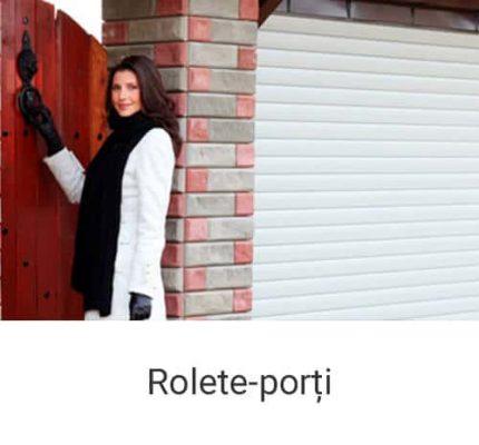 Rolete Proți pentru Garaj Chisinau Moldova